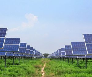 solar-power-babcock-ranch-city-florida-array-kitson-partners-1