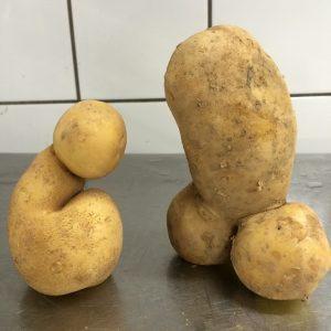 penis-potatoes