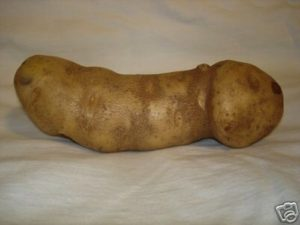 potatopenis7