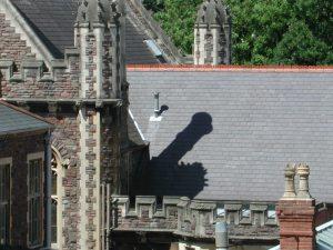 rays-shadow